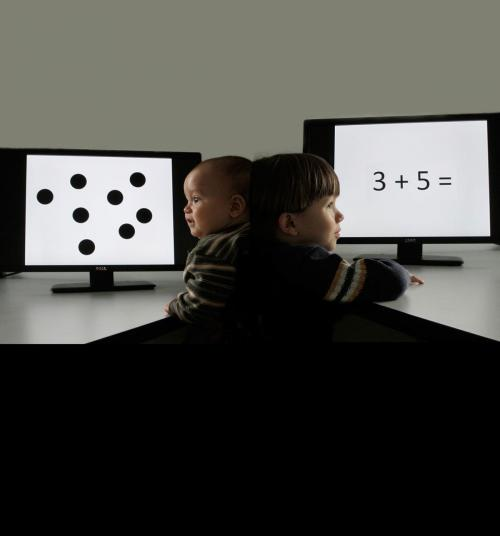 Babies' number sense could predict future math skills