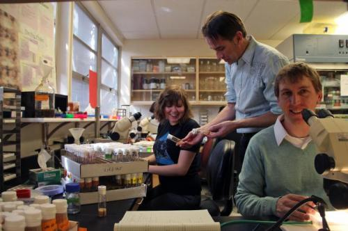 Nerve regeneration research and therapy may get boost from new discovery