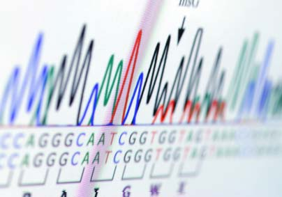 New genetic analysis method holds promise for understanding causes of disease
