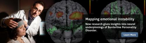 New insights into the 'borderline personality' brain