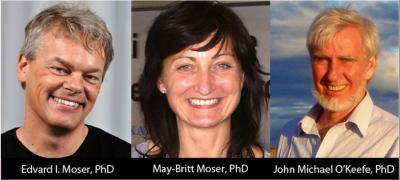 Norwegian brain researchers share Horwitz prize