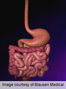 Positive diagnostic strategy non-inferior to exclusion in IBS