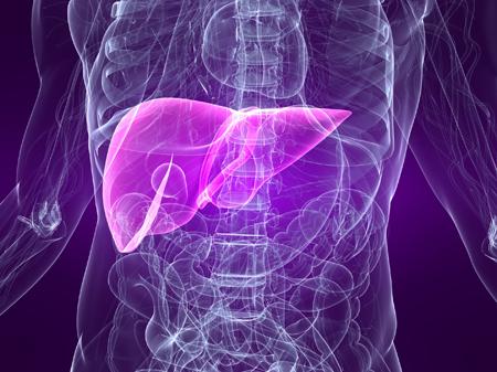 Predicting liver injury in paracetamol overdose patients