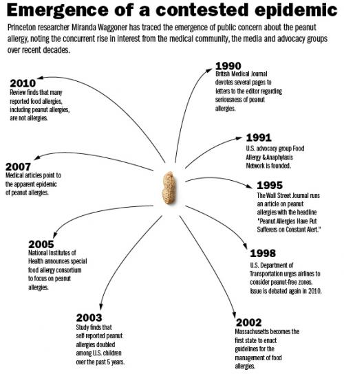 Researcher digs into the contested peanut-allergy epidemic