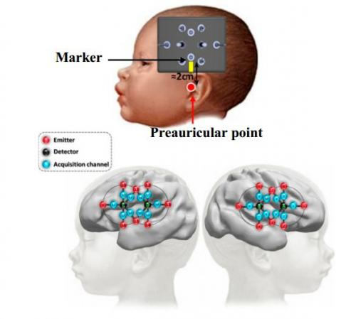 Study shows human brain able to discriminate syllables three months prior to birth