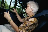 Seniors more likely to crash when driving with pet: study