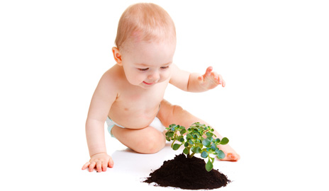 Touching thyme: Babies reluctant to grab plants, study shows