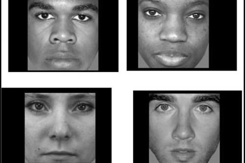 What's in a face?Researchers find patterns of neural activity in brain region that plays a role in recognizing traits