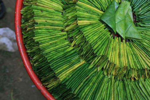 World first clinical trial supports use of Kava to treat anxiety