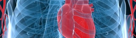 Making sense of genetic testing for heart disease