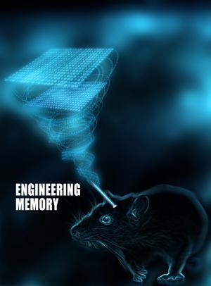 Shining a light on memory