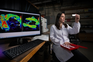 Researchers create tool to help unravel secrets of cancer