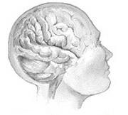 Schizophrenia may raise dementia risk in older adults
