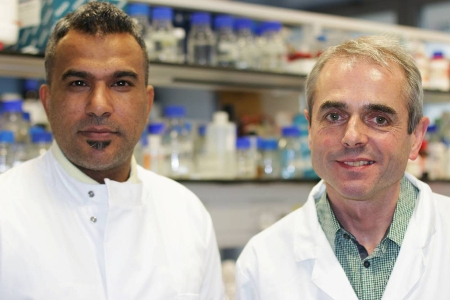 Scientists uncover potential new defence against hospital-acquired infections