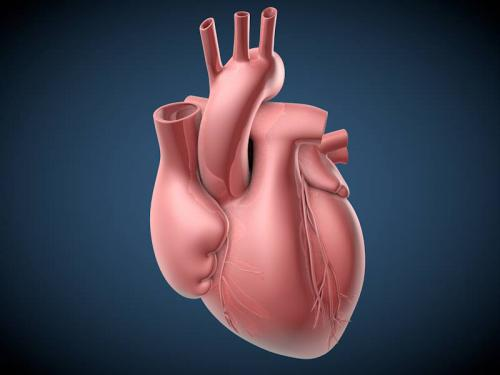 New blood test identifies heart-transplant rejection earlier than biopsy can