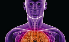 Bacteria in cystic fibrosis lung infections become selfish