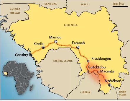 Scientists identify a new variant of Ebola virus in Guinea