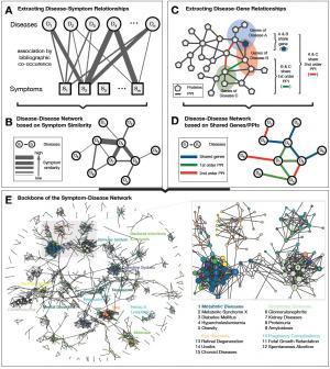 human symptoms disease network