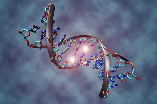 Identifying epigenetic markers in cancer cells could improve patient treatment