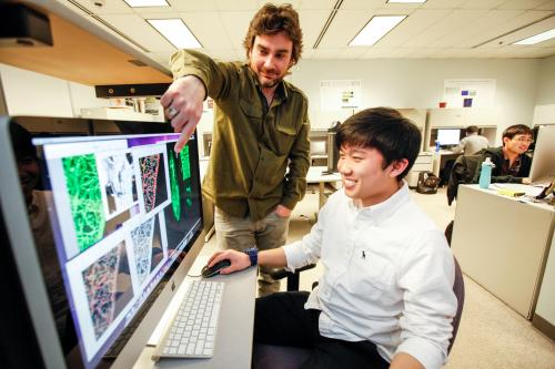 IUPUI researchers use computers to 'see' neurons to better understand brain function