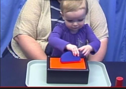 Learning by watching, toddlers show intuitive understanding of probability