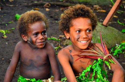 Melanesian offspring prove less susceptible to malaria