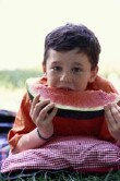 Most kids eat fruit, veggies daily: CDC