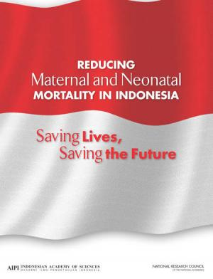 NAS report: Make childbirth safer in Indonesia