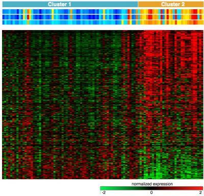 New advances in the chronic lymphocytic leukaemia genome