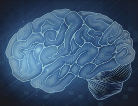 New brain mechanism study could advance artificial intelligence