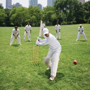 New study analyses how cricketers' visual skills change with age