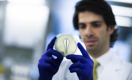 'Phantom' superbugs – a silent killer