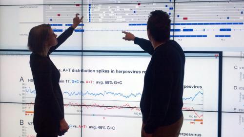 Quantifying genomic variation of herpes viruses is crucial step toward a vaccine