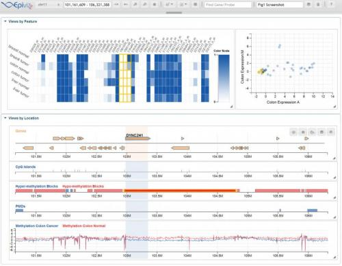 UMD researchers develop tool to better visualize, analyze human genomic data