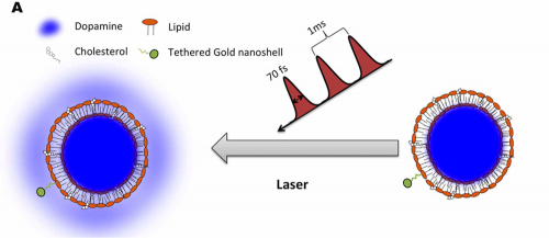 Using femtosecond lasers to administer drugs